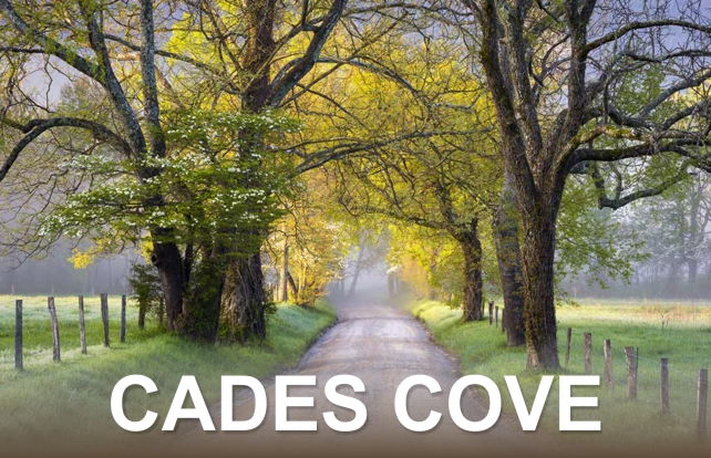Cades Cove | Great Smoky Mountains National Park | My Smoky Mountain Guide