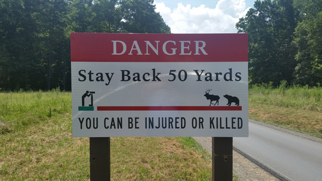 Danger | Stay Back 50 Feet from Wildlife | Cades Cove | My Smoky Mountain Guide