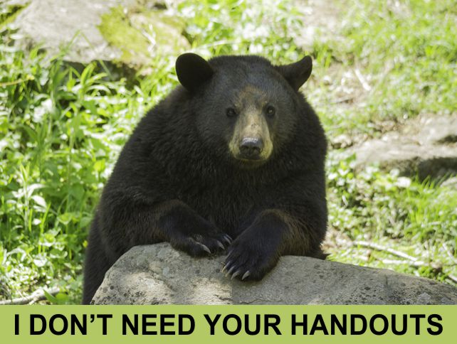 I Don't Need Your Handouts | Do Not Feed the Bears