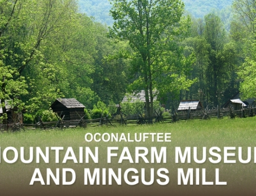 Oconaluftee Mountain Farm Museum and Mingus Mill