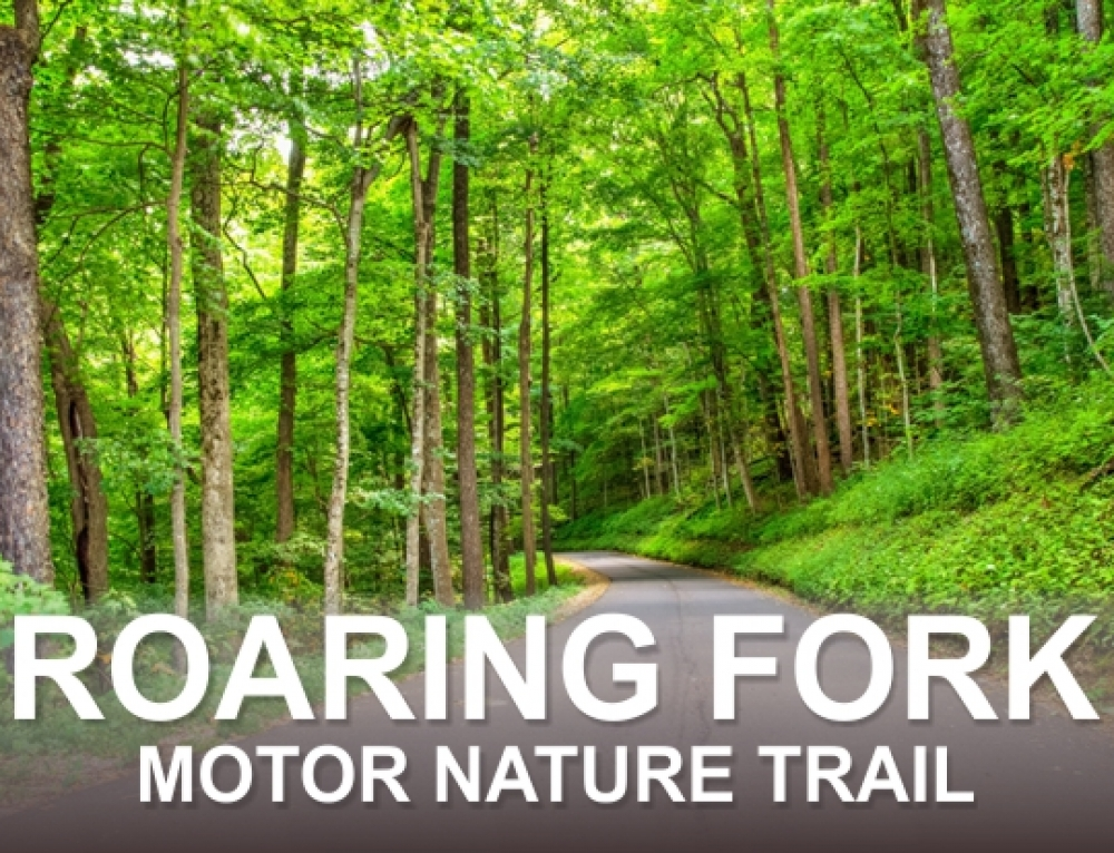 Roaring Fork Motor Nature Trail History