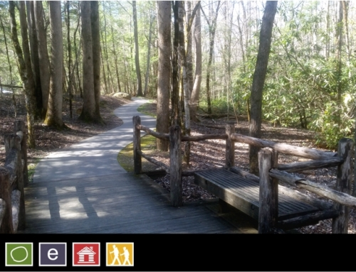 15. Sugarlands Valley Nature Trail
