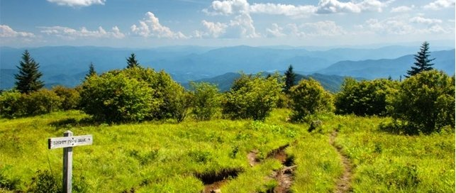 Andrews Bald | Great Smoky Mountains National Park
