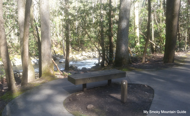 Bench on Trail Next to River | Sugarlands Valley Nature Trail
