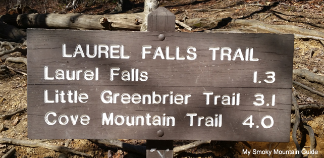 Laurel Falls Trail Markers