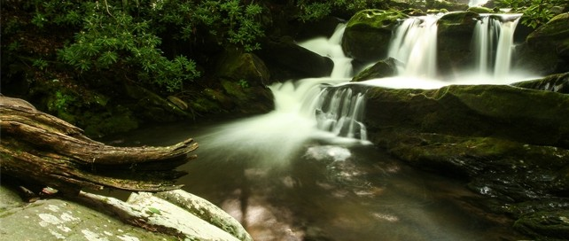 Middle Prong Trail | Cascading Waterfalls | Great Smoky Mountains National Park