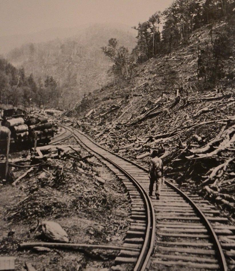 Tremont, Tennessee after Little River Railroad and Lumber Company had cut all the trees | 1930 | Great Smoky Mountains National Park