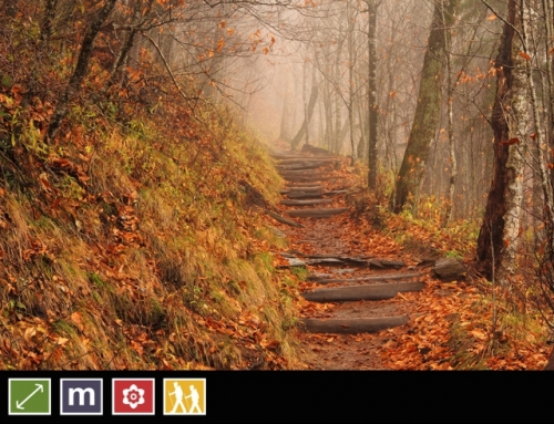 24. Appalachian Trail
