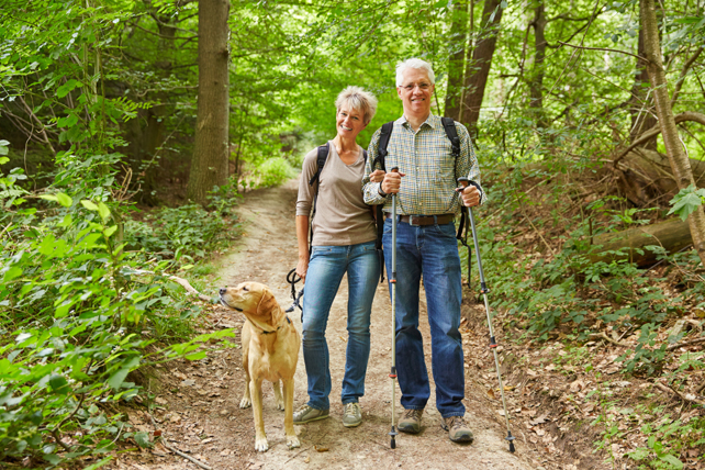 Pet Policy | Great Smoky Mountains National Park