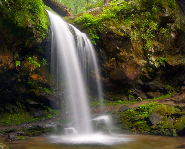 Grotto Falls | Trillium Gap Trail | Great Smoky Mountains National Park