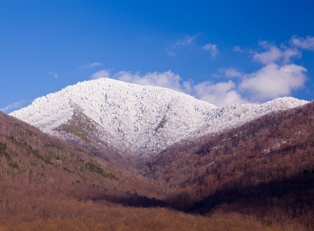 Mt LeConte Covered in Snow | Alum Cave Trail