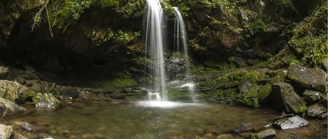 Trillium Gap Trail to Grotto Falls | Great Smoky Mountains National Park