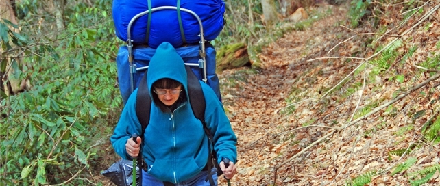 Boogerman Loop via Caldwell Fork Trail   38 Popular Day Hikes   My Smoky Mountain Guide