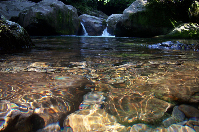 Midnight Hole Falls | Big Creek Trail | 38 Popular Day Hikes | My Smoky Mountain Guide