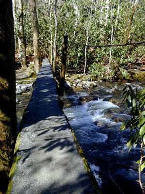 Smokemont Loop Trail Footbridge   38 Popular Day Hikes