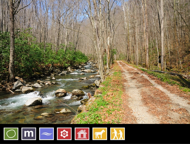 Smokemont Loop Trail | 38 Popular Day Hikes | My Smoky Mountain Guide