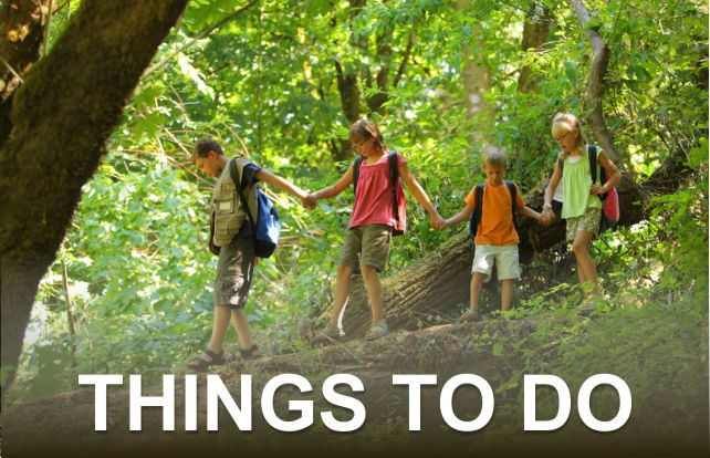 Things to Do | Great Smoky Mountains National Park