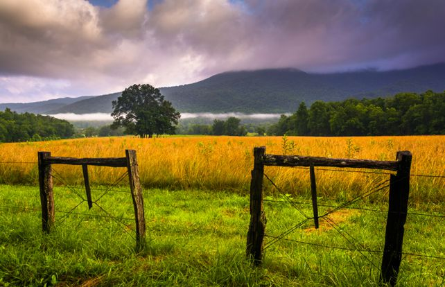 Bicycling in Cades Cove | Great Smoky Mountains National Park | My Smoky Mountain Guide