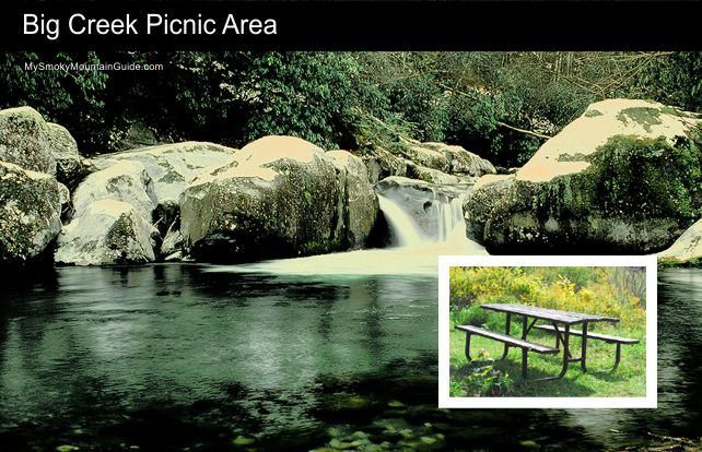 10. Big Creek Picnic Area