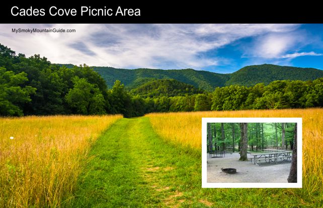 Cades Cove Picnic Area | Great Smoky Mountains National Park | My Smoky Mountain Guide