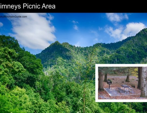 4. Chimneys Picnic Area
