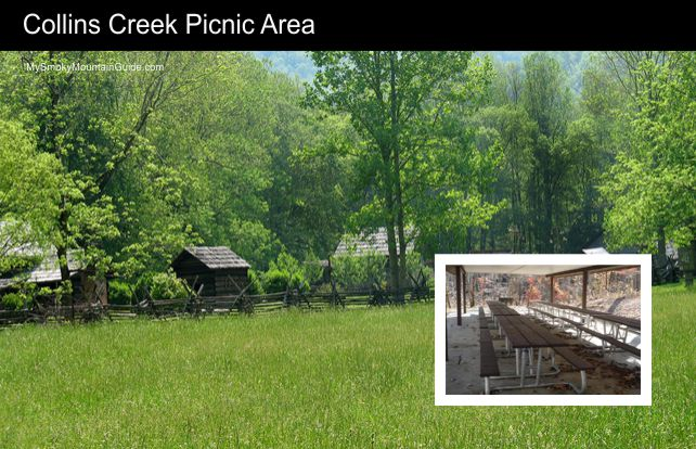 Collins Creek Picnic Area | Great Smoky Mountains National Park | My Smoky Mountain Guide
