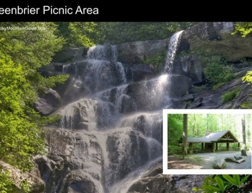 6. Greenbrier Picnic Area