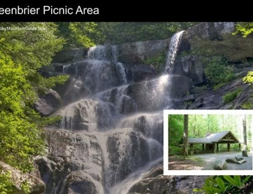 6. Greenbrier Picnic Area