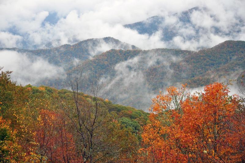 Heintooga View of Balsam Mountain | Great Smoky Mountains National Park | My Smoky Mountain Guide