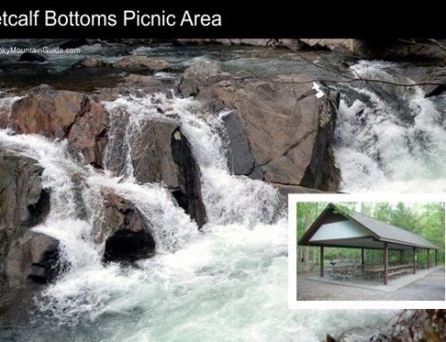 2. Metcalf Bottoms Picnic Area