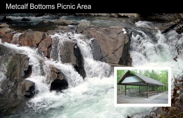Metcalf Bottoms Picnic Area   Great Smoky Mountains Natinal Park   My Smoky Mountain Guide