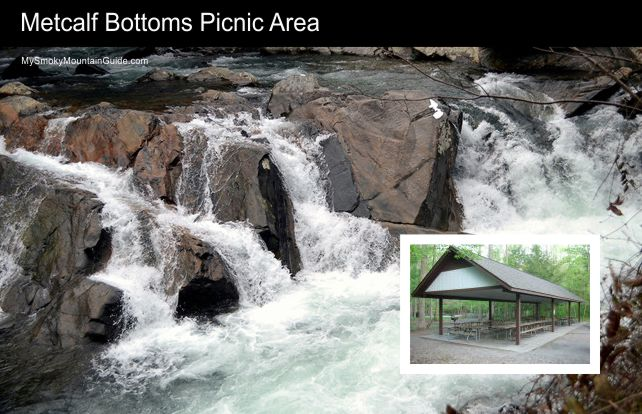 Metcalf Bottoms Picnic Area | Great Smoky Mountains Natinal Park | My Smoky Mountain Guide