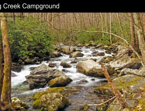 5. Big Creek Campground