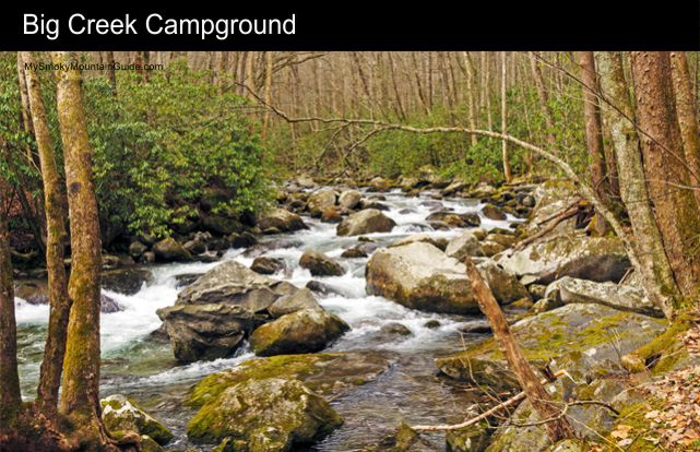 5 Big Creek Campground Great Smoky Mountains National Park