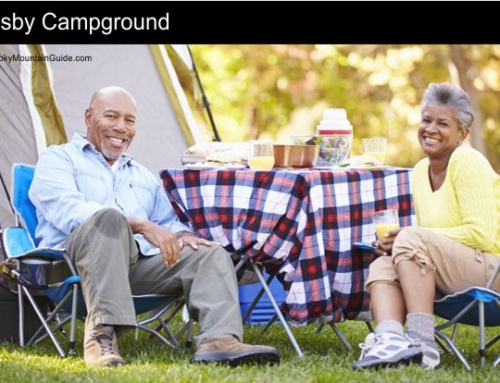 4. Cosby Campground