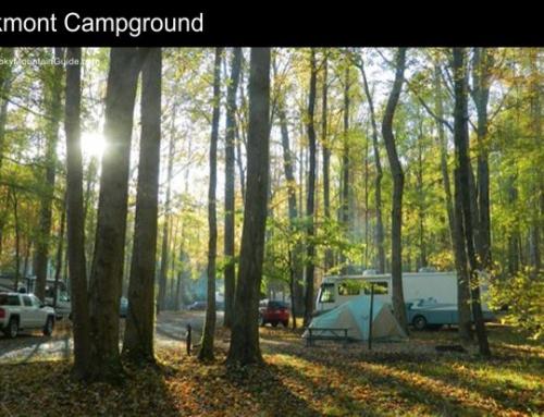 3. Elkmont Campground