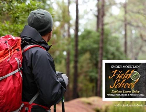 Smoky Mountain Field School