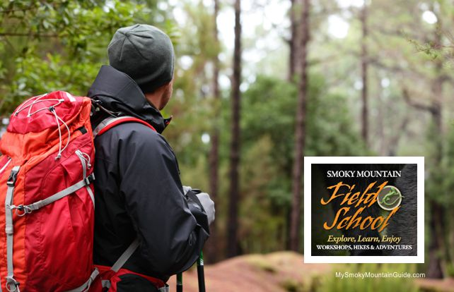 Smoky Mountain Field School | University of Tennessee & Great Smoky Mountains National Park