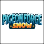 Buy Discount tickets to Pigeon Forge Snow!