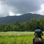 Davy Crockett Riding Stables | Townsend, Tennessee | Townsend Outdoor Adventure | My Smoky Mountain Guide