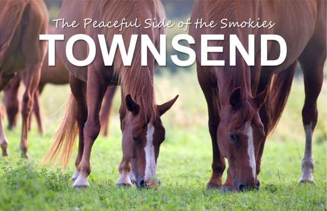 Townsend: The Peaceful Side of the Smokies | My Smoky Mountain Guide | Great Smoky Mountains