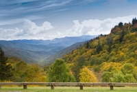 View from Newfound Gap Road | Great Smoky Mountains National Park