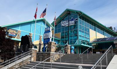Ripley's Aquarium of the Smokies | Gatlinburg, TN