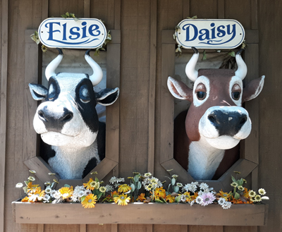 Elsie & Daisey the Cows at Ripley's Old MacDonald's Farm Mini Golf