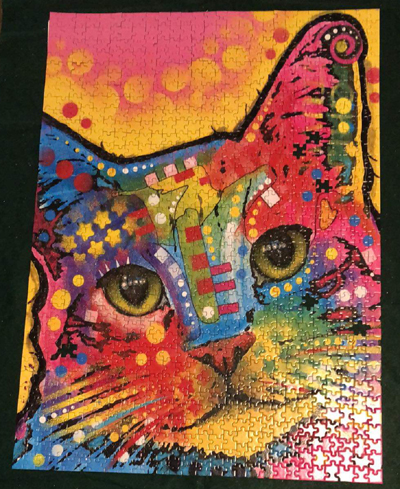 Psychodelic Cat Puzzle at Puzzled Retail Shop in Pigeon Forge